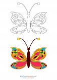 Match Up Coloring Pages – Detailed Butterfly
