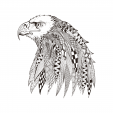 White Eagle Coloring Page