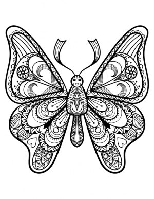advanced butterfly coloring page - Advanced Coloring Pages Butterfly