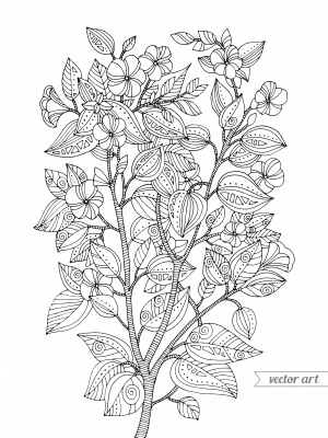 cherry blossom coloring page - Cherry Blossom Tree Coloring Pages
