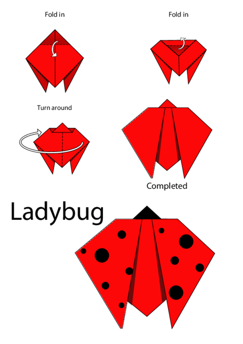 Easy Origami Instructions Ladybug