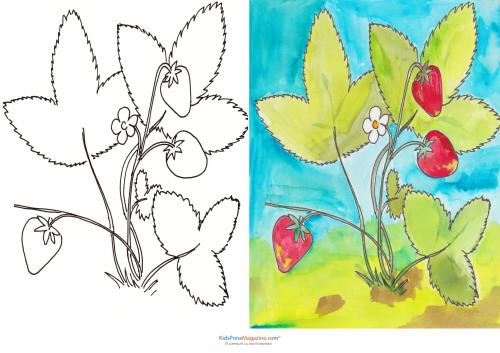 Match Up Coloring Pages – Strawberry Plant - KidsPressMagazine.com