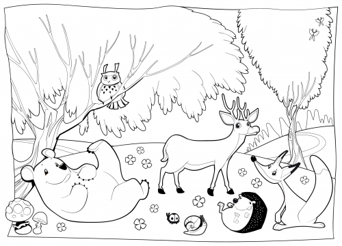 Detailed Coloring Page - Forest Creatures ...