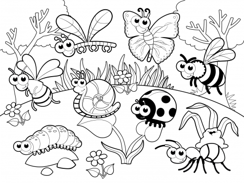 coloring pages bugs - detailed coloring page bugs in our garden