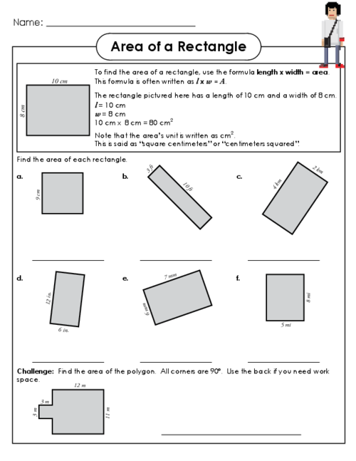 Finding area worksheets for third grade
