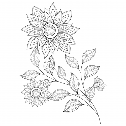 free advanced flower coloring pages - photo#29