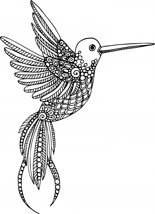 - Advanced Animal Coloring Page 18 - KidsPressMagazine.com
