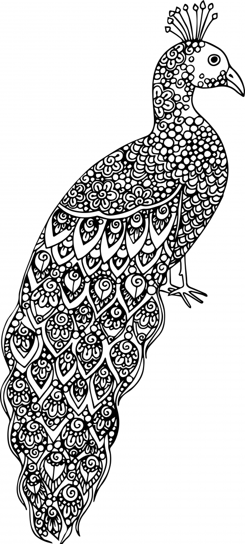 - Advanced Animal Coloring Page 19 - KidsPressMagazine.com