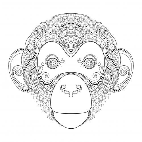 Monkey Advanced Coloring Page Kidspressmagazine Com