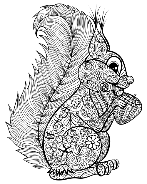 Go Nuts for a Squirrel Coloring Page - KidsPressMagazine.com