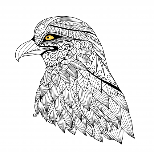 The Eagles Eye Free Coloring Page