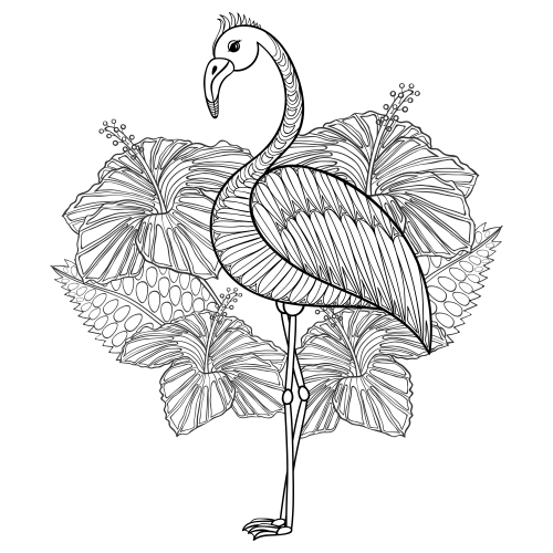 Flamingo Free Adult Coloring Page