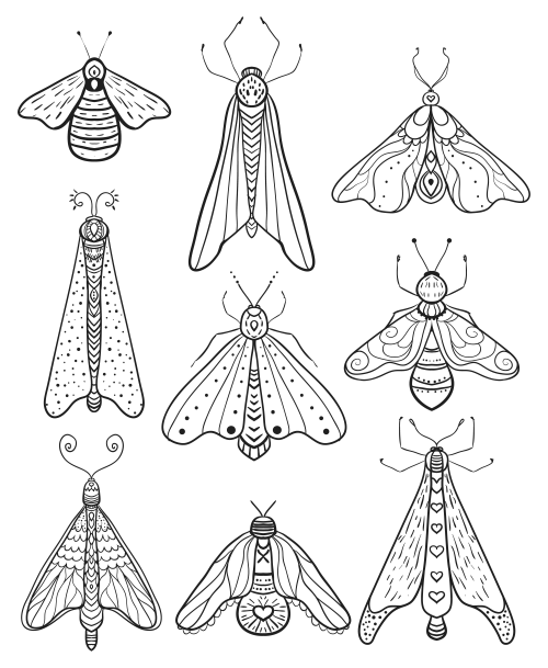 Advanced Insect Coloring Page