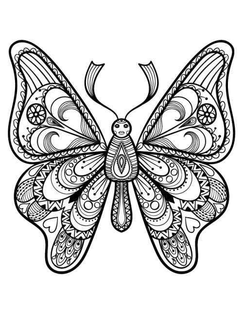 advanced butterfly coloring page