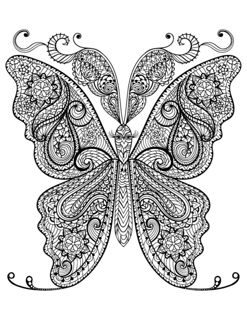 Free adult coloring butterfly page for Coloring pages of butterflies for adults