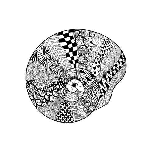 Spiral Seashell Coloring Page - KidsPressMagazine.com