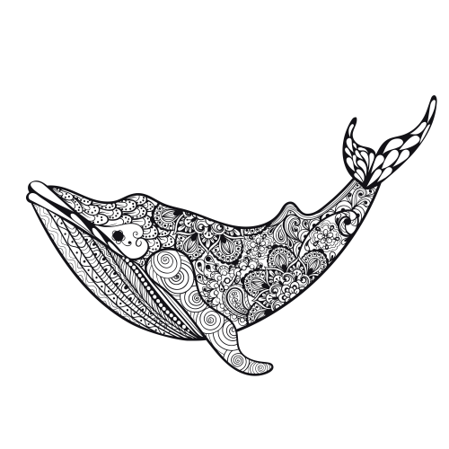 Humpback Whale Coloring Pages | eating coloring book illustration ... | 500x500