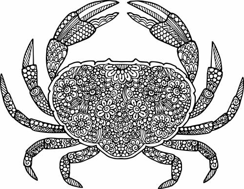 crab coloring pages - crab coloring page