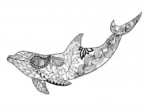 hard dolphin coloring pages - photo#11