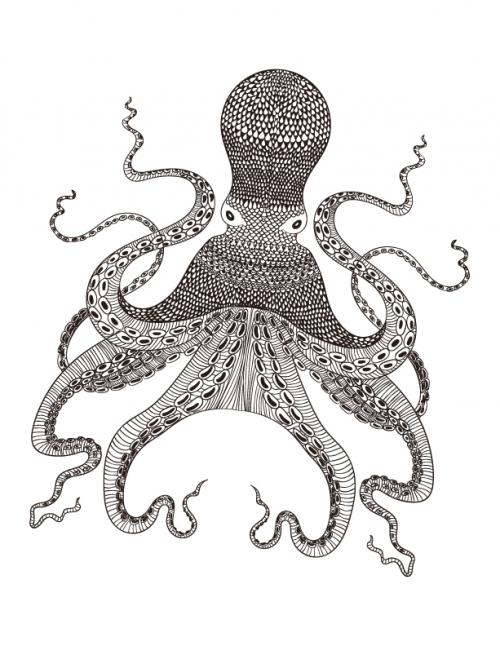 Octopus Coloring Page Kidspressmagazine Com