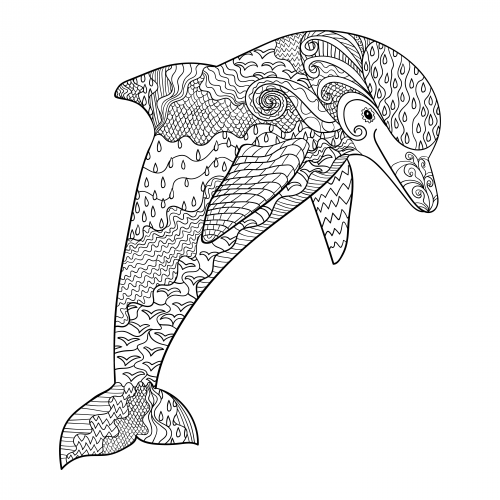 get it now - Dolphin Coloring Pages