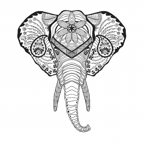 Elephant doodle coloring page Elephant coloring book for adults