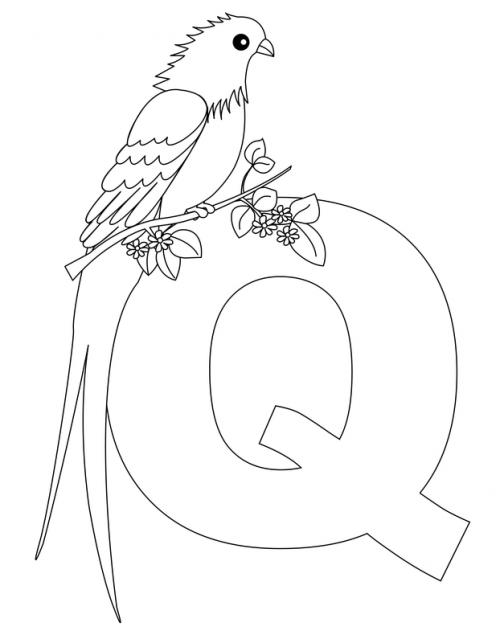 Alphabet Coloring Pages Q Kidspressmagazine Com