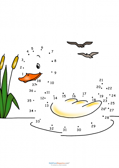 Connect The Dots Duck: Line Up Ducks With Worksheets At Alzheimers-prions.com