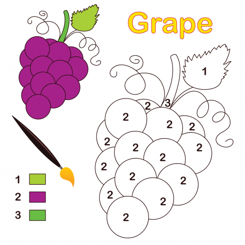 Grape Color By Number Coloring Page