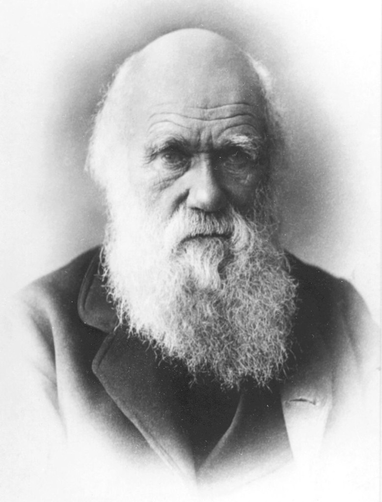 """the life of charles darwin and his theory of evolution Known as the """"martin luther"""" of his time, charles darwin shocks the world in   darwin dies in 1882, but his evolution theory lives on, still managing to stir up."""