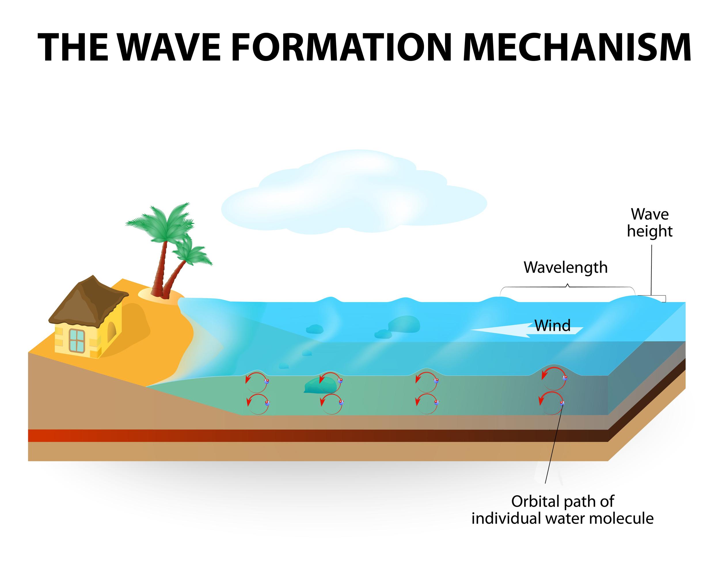 How Waves Form - KidsPressMagazine.com