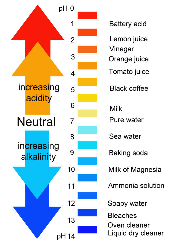 how to tell if substance is acidic or baseic