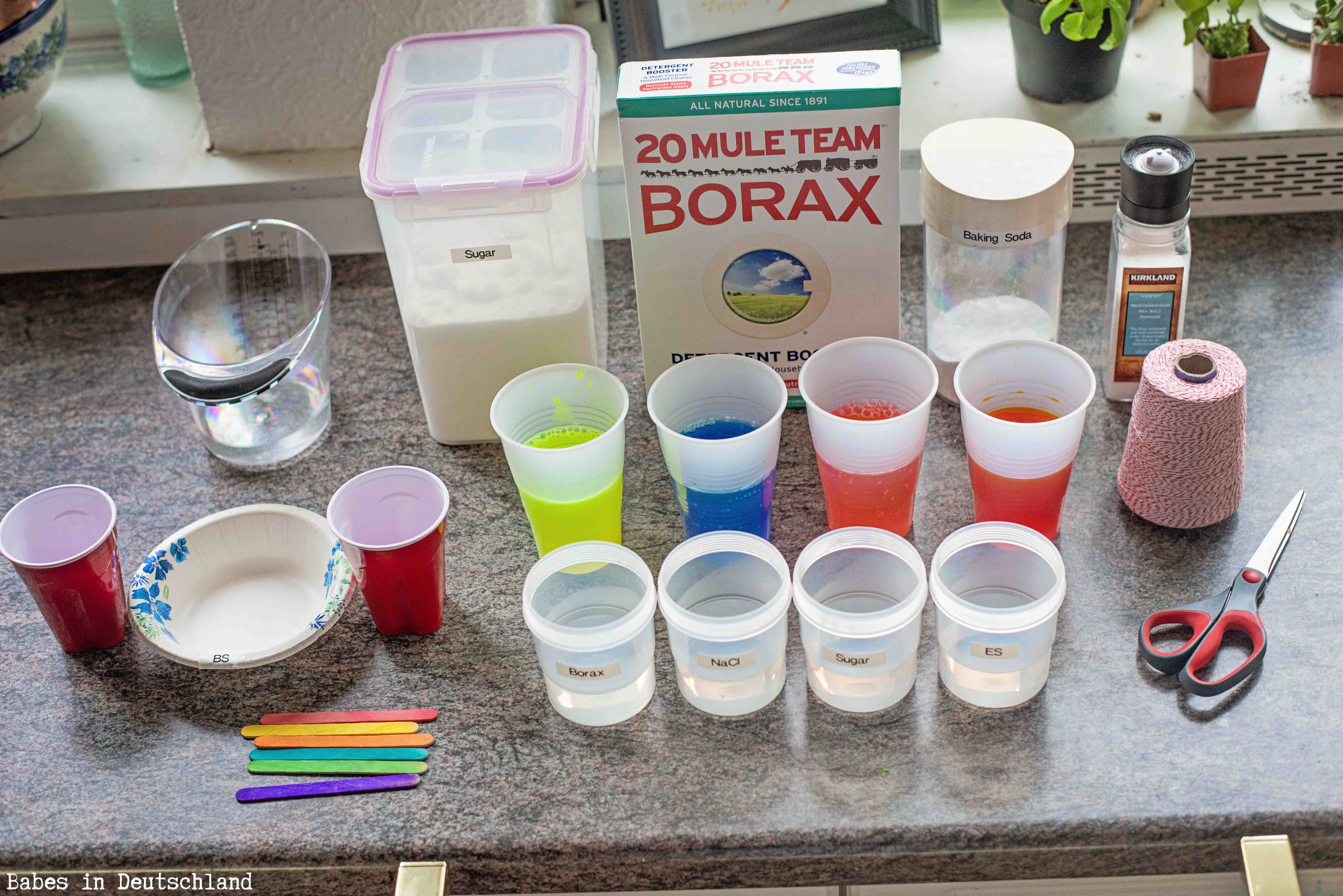 borax crystals science project