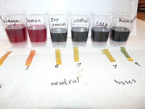 natural and common ph indicators experiment essay Preparation of natural indicators from plants  experiment, some of these indicators will be extracted the ph's at which the indicators change.